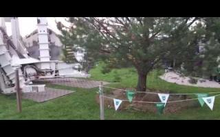 Big tree replanting